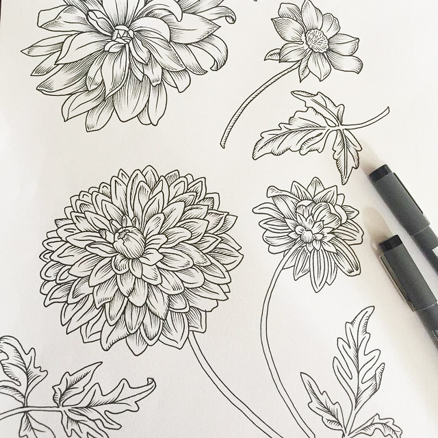 Hand sketch of flowers